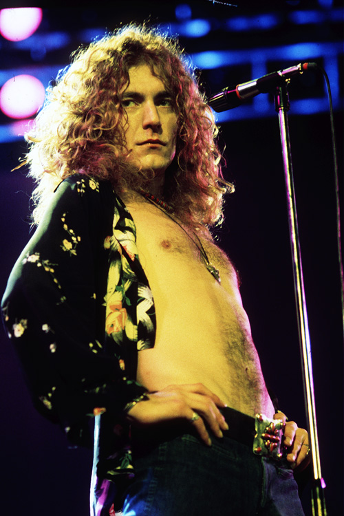 Image result for singer robert plant nude